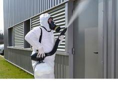 شركة مكافحة حشرات بالقنفذة