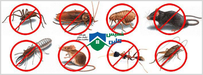 Photo of شركة رش مبيدات بالمظيلف 0558232663 مع الخصم 44% إتصل نصلك