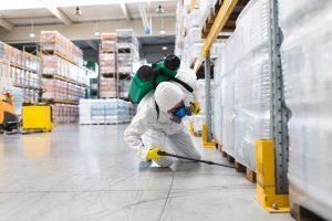 شركة رش مبيدات بحلي