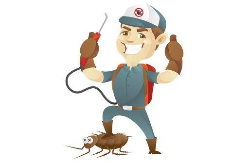 Photo of شركة مكافحة حشرات بالقوز 0558232663 مع خصم 33%