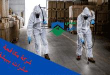 Photo of شركة مكافحة حشرات ببيشة |0558232663 ارخص الاسعار مع الضمان